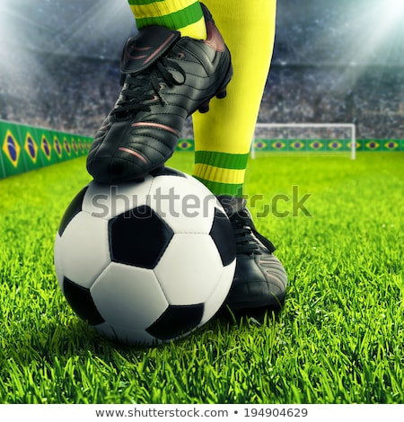 Soccer ball with Brazil flag on pitch Stock photo © stevanovicigor
