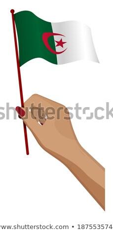 Алжир небольшой флаг карта народов демократический Сток-фото © tashatuvango