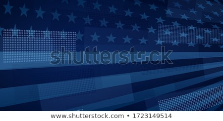amerikaanse · tekst · vlag · geboren · USA · grunge - stockfoto © lizard