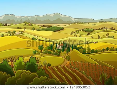 пейзаж · итальянский · деревне · небе · весны · трава - Сток-фото © deyangeorgiev