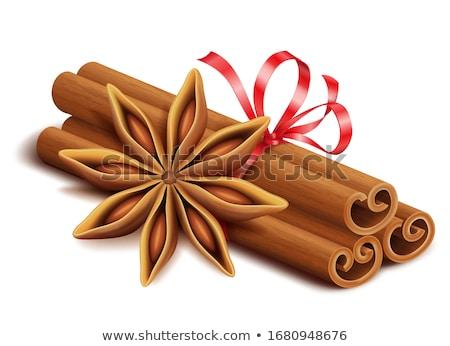 anise,cinnamon and ingredients Stock photo © M-studio