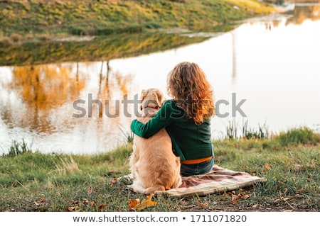 puppy of golden retriever playing with blanket Stock photo © phbcz