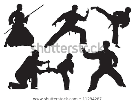 various martial arts silhouettes Stock photo © Slobelix