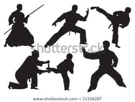 artes · marciais · karatê · chutá · ilustração · masculino · especialista - foto stock © slobelix