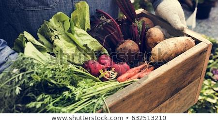 Organique légumes oignons carottes vieux table Photo stock © Freila