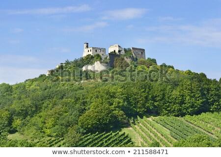 руин замок снизить Австрия дома здании Сток-фото © phbcz
