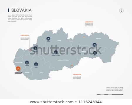 Orange bouton image cartes Slovaquie forme Photo stock © mayboro
