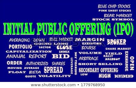 IPO - Text on Blue Puzzles. Stock photo © tashatuvango