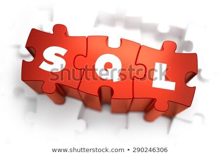 Sql tekst Rood witte 3d render internet Stockfoto © tashatuvango