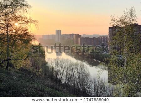 Nehir yukarı bahar şafak parlak Stok fotoğraf © suegresham