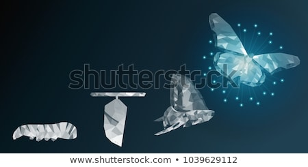 Global Butterfly Stock photo © Lightsource