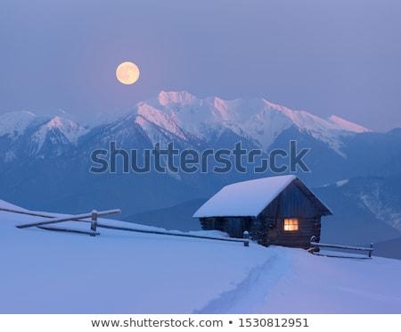 Telihold kunyhó tél tájkép csillagos ég fény Stock fotó © Kotenko