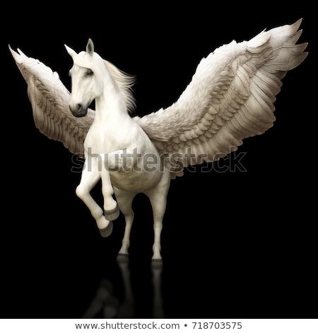 Preto cavalo para cima tatuagem projeto Foto stock © Genestro