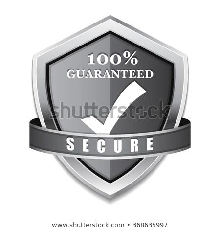 защиту 100 процент безопасного серебро щит Сток-фото © rizwanali3d