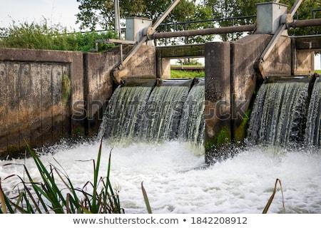 озеро · Калифорния · реке · энергии · власти · падение - Сток-фото © njnightsky