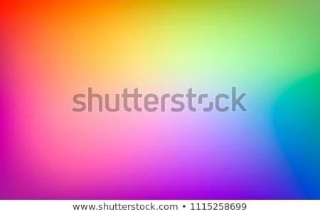 Rainbow gradient Stock photo © vapi