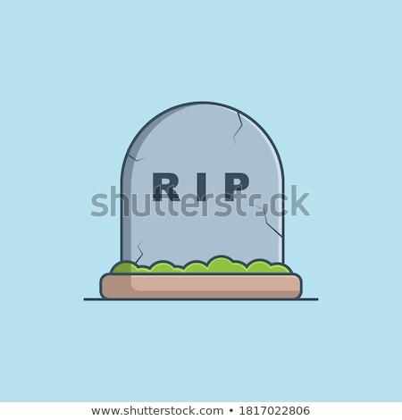 Graves piedra suelo ilustración fondo planta Foto stock © bluering