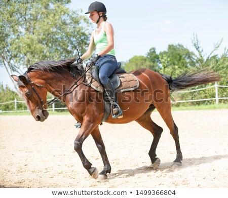 Jonge paardrijden meisje rottweiler jong meisje zwarte Stockfoto © cynoclub