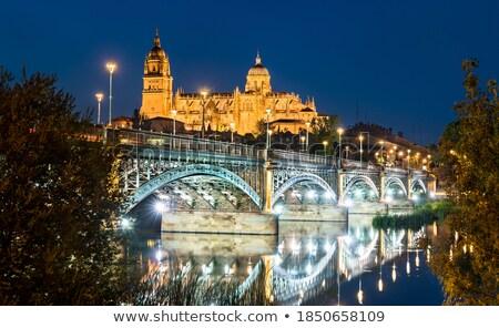 Salamanca sunset in Enrique Estevan bridge Stock photo © lunamarina