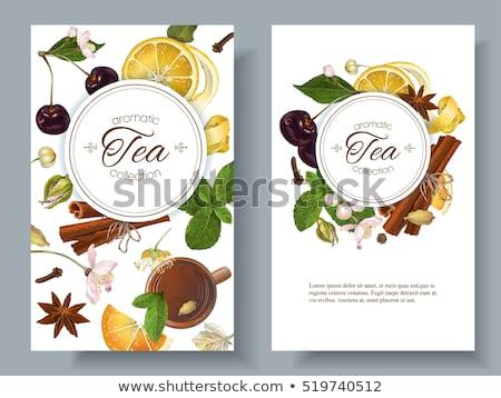 Aromás tea fűszer természetes csésze fahéj Stock fotó © wdnetstudio