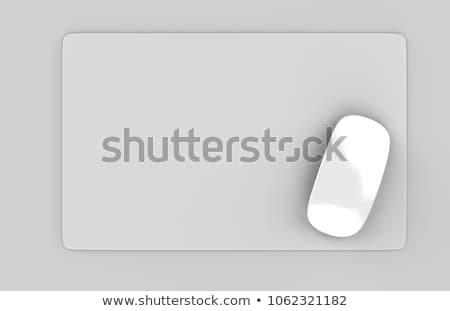 Rectangular gray table mat Stock photo © Digifoodstock
