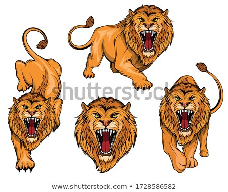 lions set of the emblems templates with angry lion head sport stock photo © masay256