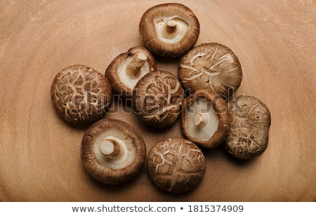 fresh shiitake mushroom stock photo © ivo_13