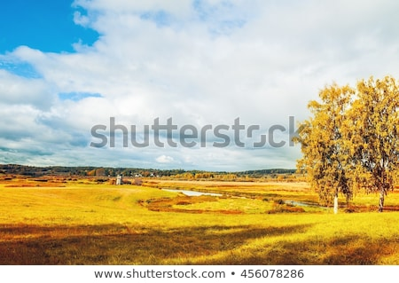 Autumn Landscape with a mountain river and birch forest Stock photo © Kotenko