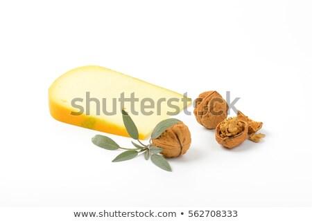 Kaas salie plakje witte blad vers Stockfoto © Digifoodstock