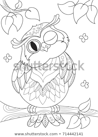 coloring book owl black stock photo olena - Coloring Book Paper Stock