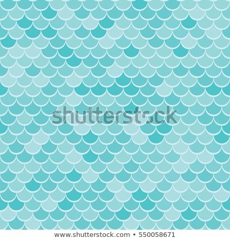 Peixe balança animal pele textura design gráfico Foto stock © pakete