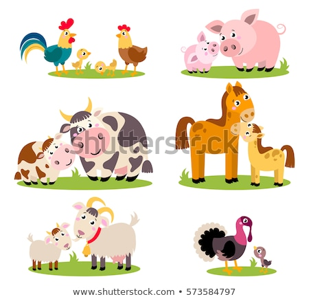 Sticker set with farm animals Stock photo © bluering