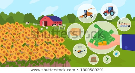 Agricultor monedas agrícola ingresos beneficio Foto stock © stevanovicigor