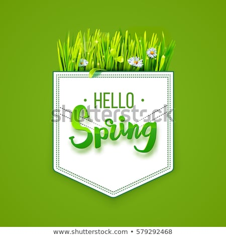 Text message hello spring, on a background of spring grass on a white background Stock photo © m_pavlov