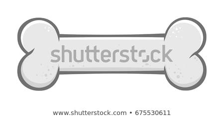 Dog bone cartoon eenvoudige tekening ontwerp grijs Stockfoto © hittoon