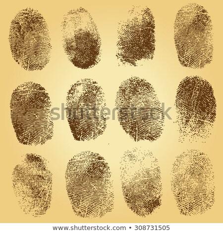 identificatie · vingerafdrukken · ingesteld · vector · veiligheid · vingers - stockfoto © robuart