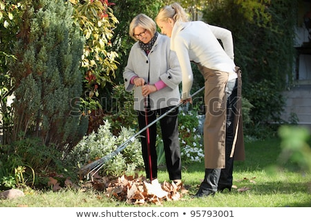 Idős nő gyep gereblye dolgozik kert Stock fotó © dolgachov