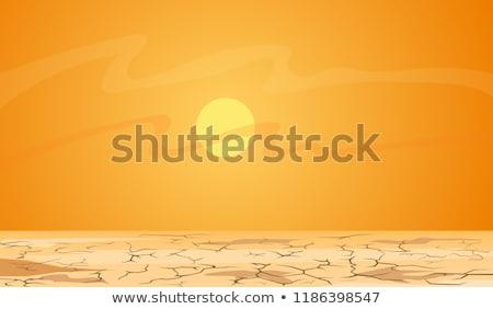a hot desert scene stock photo © bluering