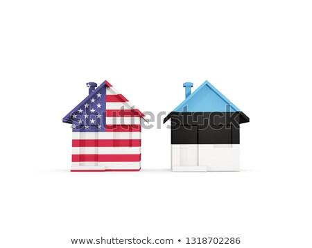 Dois casas bandeiras Estados Unidos Estônia isolado Foto stock © MikhailMishchenko