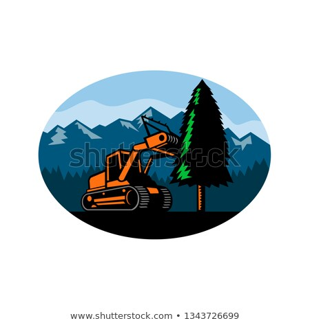 Ormancılık ağaç oval Retro retro tarzı örnek Stok fotoğraf © patrimonio