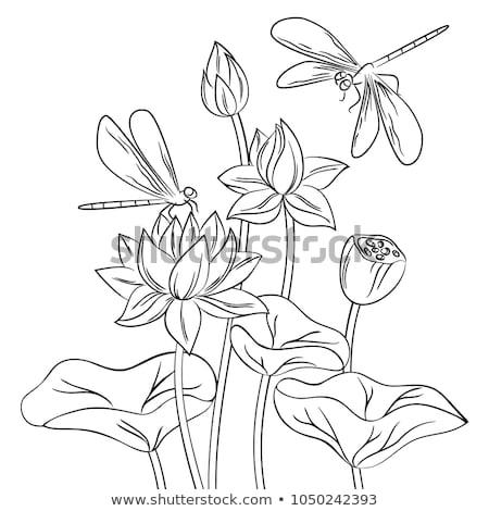 Kelebek çiçekler yalıtılmış karikatür tomurcuk vektör Stok fotoğraf © robuart