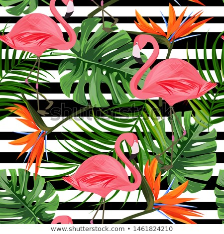Lovely Summer, Flamingos and Palm Leaves, Beach Stock photo © robuart