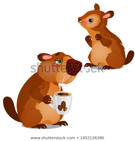 Cheerful beaver and tired beaver drinking coffee isolated on white background. Vector cartoon close- Stock photo © Lady-Luck