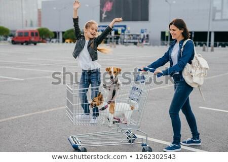 Blij jonge moeder dochter twee honden Stockfoto © vkstudio