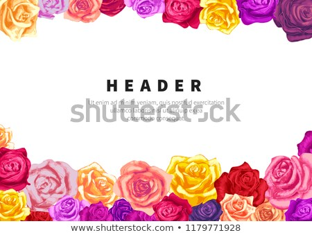 Größe horizontal Flyer Vorlage farbenreich weiß Stock foto © evgeny89