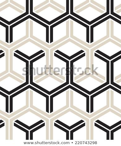Vector naadloos lijnen patroon herhalen meetkundig Stockfoto © samolevsky