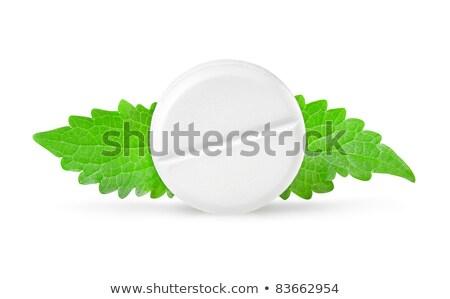 Aszpirin menta levelek izolált fehér Stock fotó © Givaga