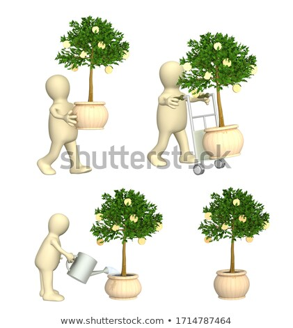 3d people - waters a tree of percent Stock photo © AnatolyM