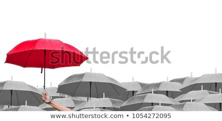 Umbrellas of different colors. stock photo © christina_yakovl