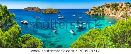 Akdeniz deniz görmek ağaç uçurum mavi Stok fotoğraf © timwege